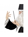 Baguette de magicien noire et blanche | Accessoires
