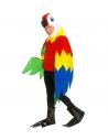 Déguisement Perroquet Enfant (costume, capuche/masque, pattes)