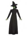 Déguisement de la Méchante Sorcière Noir (robe longue et chapeau)