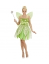 Déguisement fée, femme vert (robe, ailes)