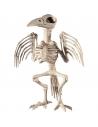 Squelette de corbeau | Décorations