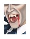 Dents de vampire | Accessoires