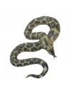 Serpent python latex | Accessoires