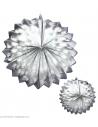 Lot de 2 Globes Argent 25 cm
