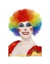 Perruque clown fou multicolore   Accessoires