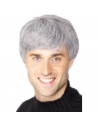 Perruque homme d'affaire grise | Accessoires